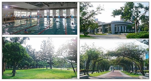 榮星花園游泳池