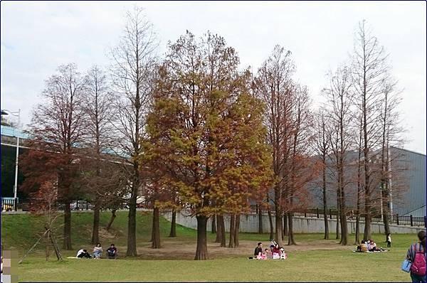 大湖公園(內湖)