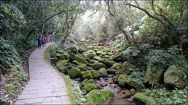 內湖大溝溪步道