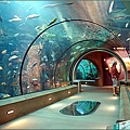 AquariumOfThePacific02.jpg