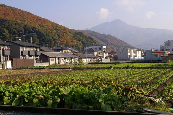 北山2.jpg
