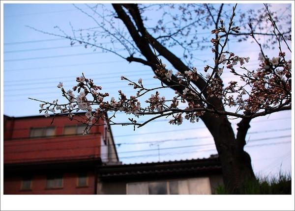 home07.jpg