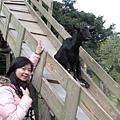 粉紅咩咩與黑山羊