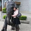 依偎在大象的身邊,迷濛的眼神。