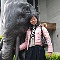 大象大象你的鼻子怎麼那麼長~