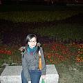 夜裡的花兒也是很努力的綻放著