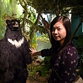 又看到台灣黑熊:p