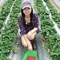開是跟草莓合照了~