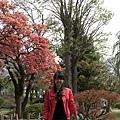 古城公園景-1.jpg