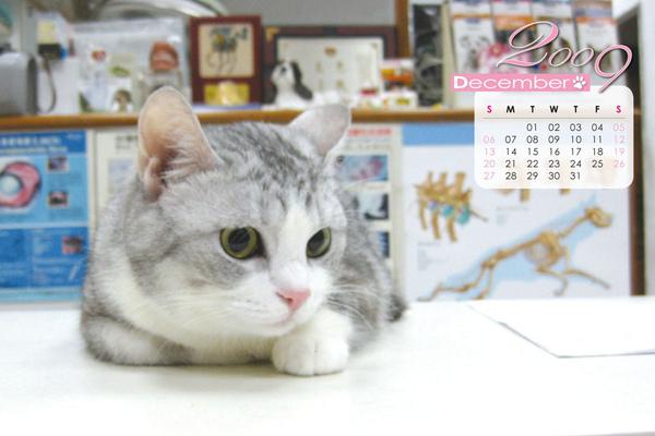 月曆-12.jpg