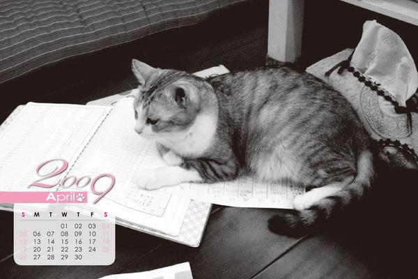 月曆-4.jpg