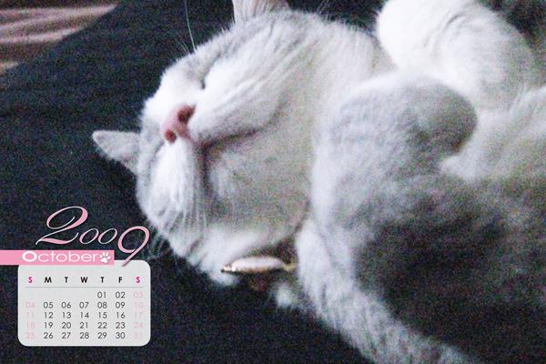 月曆-10.jpg