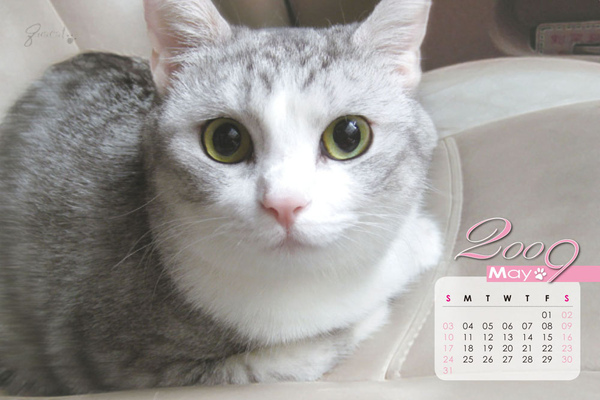 月曆-5.jpg