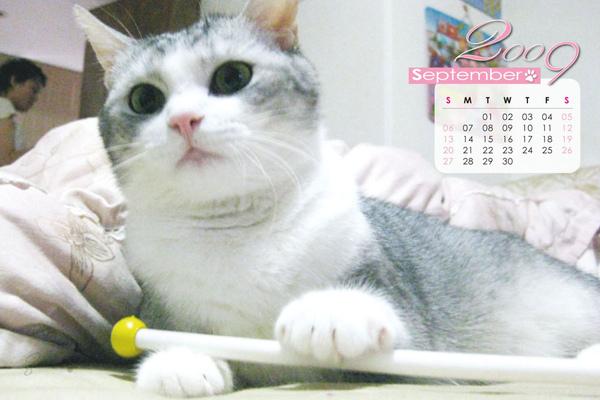 月曆-9.jpg