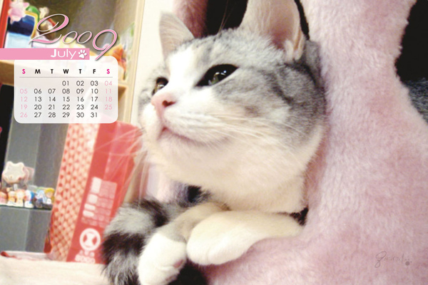 月曆-7.jpg