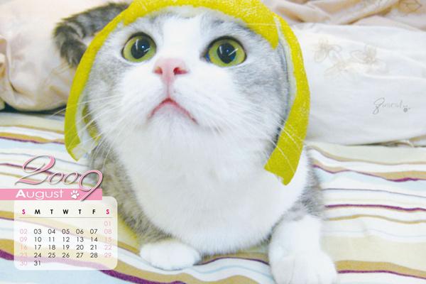 月曆-8.jpg