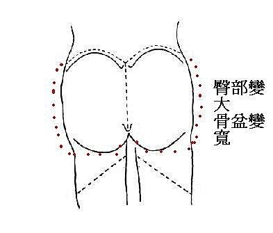 產後骨盆變 寬2