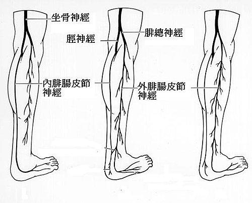 習慣性腳踝扭傷