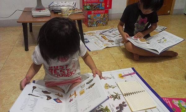 DK說給孩子聽的知識百科