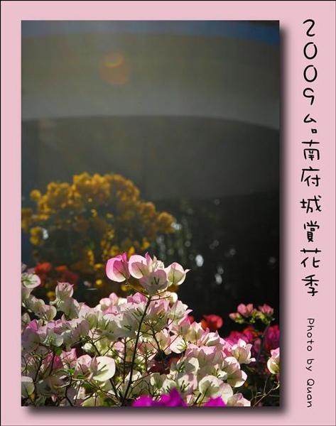 2009台南府城賞花季0045.jpg