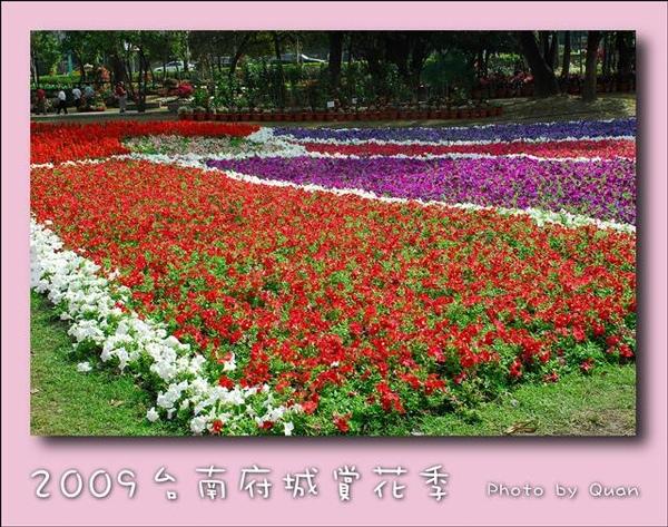 2009台南府城賞花季0092.jpg