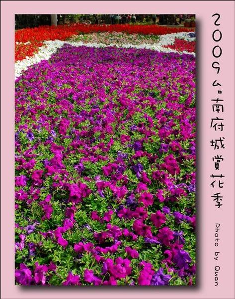 2009台南府城賞花季0096.jpg