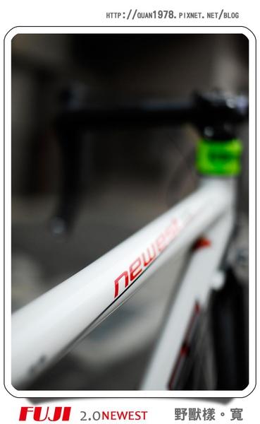 新單車0005.jpg
