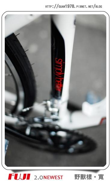 新單車0007.jpg