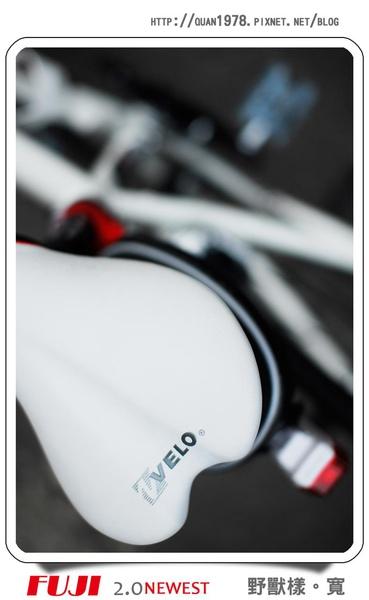 新單車0008.jpg