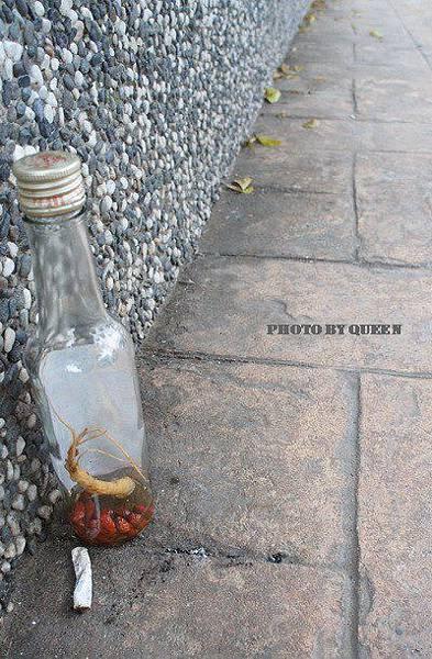 被棄置在牆角的藥酒瓶與煙蒂