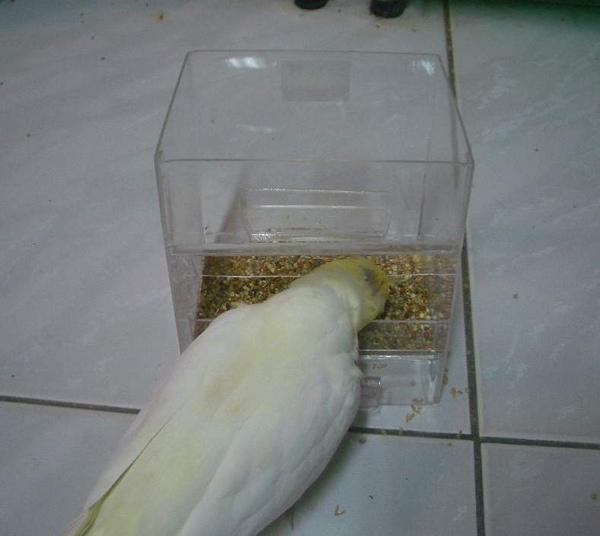 盒 (3).JPG