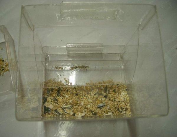 盒 (9).JPG