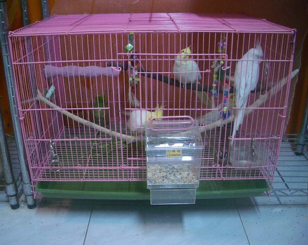 盒 (4).JPG
