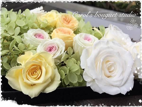 凱珞的不凋花與永生花