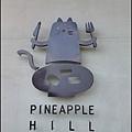 嘉義PineApple Hill 旺萊山P1280129_調整大小11.JPG