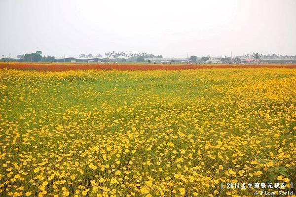 2014臺中國際花毯節P1310425_調整大小1.JPG