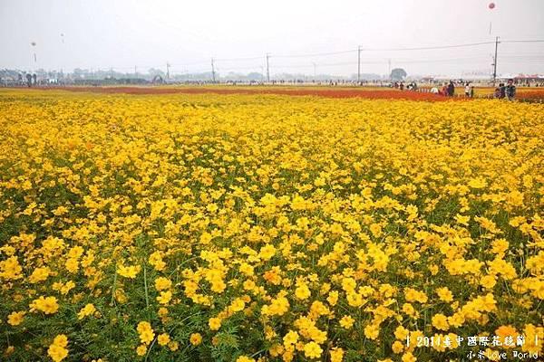 2014臺中國際花毯節P1310438_調整大小1.JPG