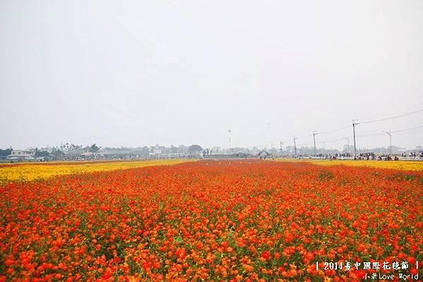 2014臺中國際花毯節P1310433_調整大小1.JPG