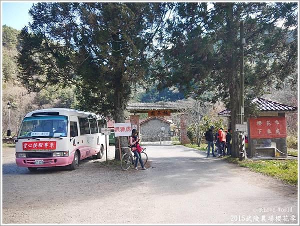 2015武陵農場櫻花季P1370026_調整大小1.JPG