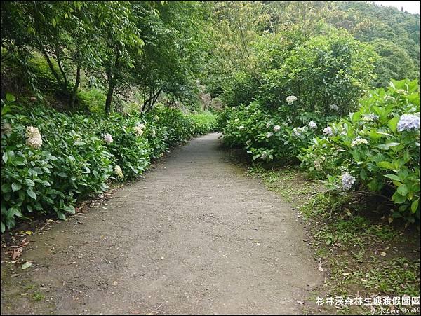 杉林溪森林生態渡假園區P1540530_調整大小1.JPG