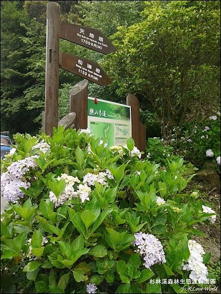 杉林溪森林生態渡假園區P1540537_調整大小1.JPG