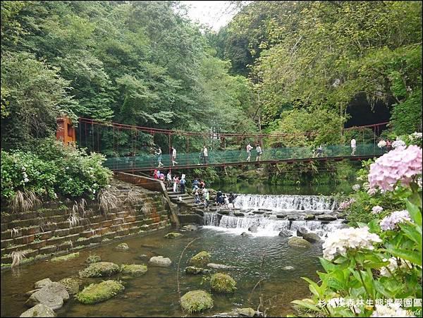 杉林溪森林生態渡假園區P1540550_調整大小1.JPG