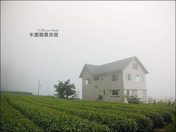 阿里山禾園觀霧民宿P1470233_調整大小1.JPG