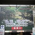四草綠色隧道(台灣袖珍版亞馬遜河)P1520953_調整大小1.JPG