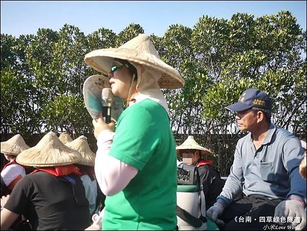 四草綠色隧道(台灣袖珍版亞馬遜河)P1520967_調整大小1.JPG