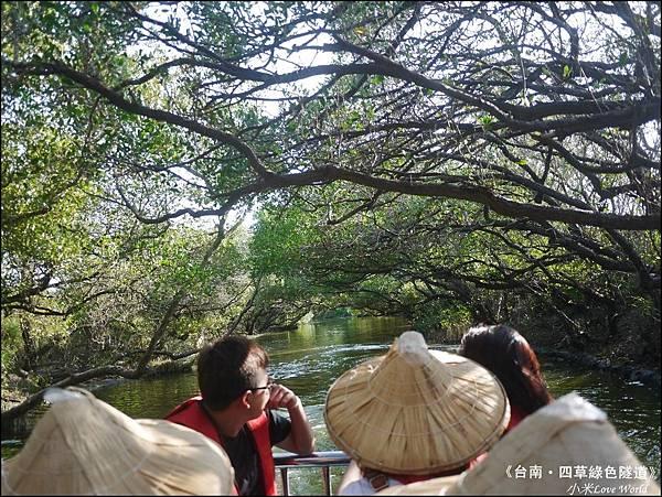 四草綠色隧道(台灣袖珍版亞馬遜河)P1530011_調整大小1.JPG