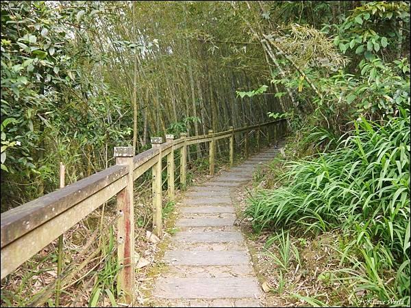 嘉義青年嶺步道、燕子崖、千年蝙蝠洞P1530113_調整大小1.JPG