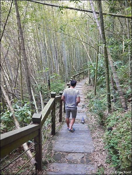嘉義青年嶺步道、燕子崖、千年蝙蝠洞P1530115_調整大小1.JPG