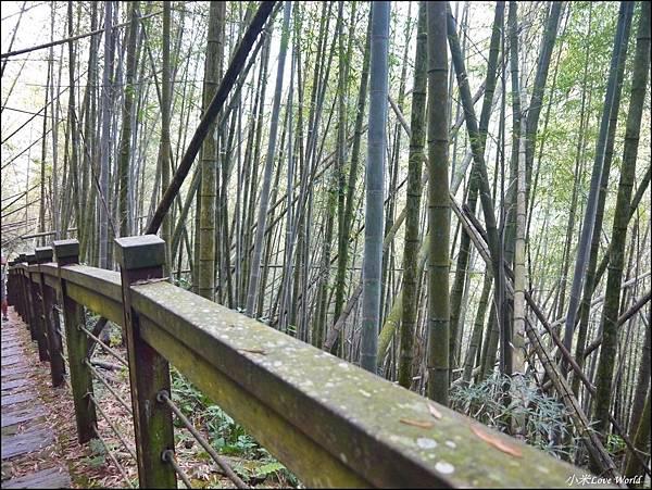 嘉義青年嶺步道、燕子崖、千年蝙蝠洞P1530116_調整大小1.JPG