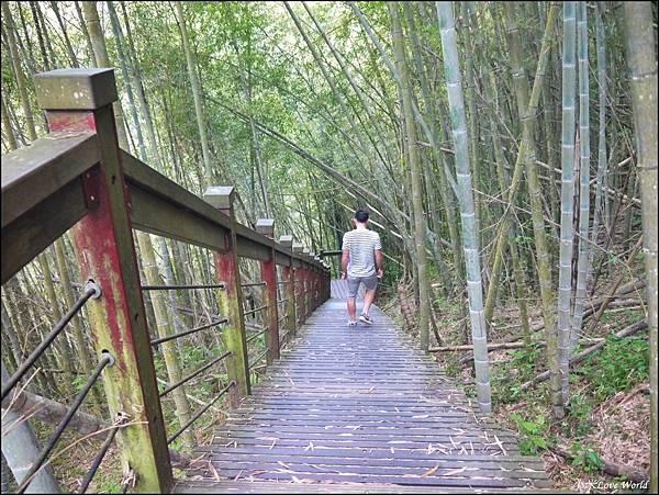 嘉義青年嶺步道、燕子崖、千年蝙蝠洞P1530118_調整大小1.JPG